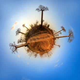 Planet Baobab