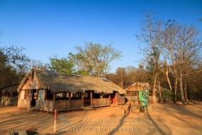 Kirindy Camp